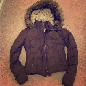Hollister Jackets & Coats - Hollister Coat